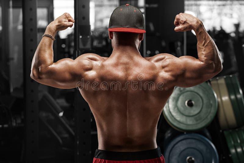 Человек вид сзади мышечный представляя в спортзале, показывающ назад и бицепсе Сильный мужской нагой торс, разрабатывая стоковое фото rf