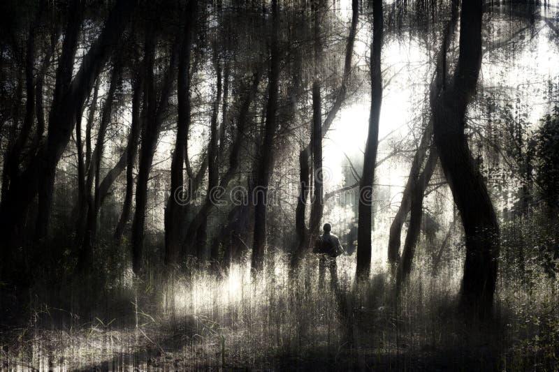 Человек в лесе стоковые изображения rf