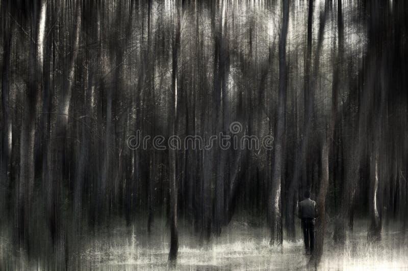 Человек в лесе стоковая фотография rf