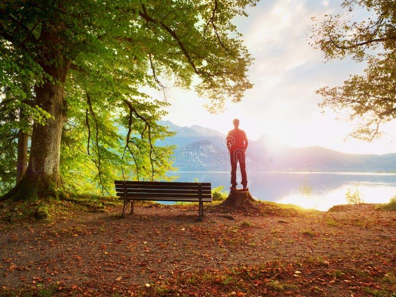 Человек в красной куртке и черные брюки стоят на пне дерева Пустая деревянная скамья на озере горы стоковое изображение rf