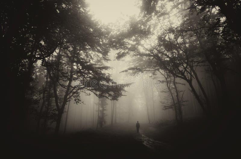 Человек в темноте преследовал загадочный лес с туманом на хеллоуине стоковые изображения rf
