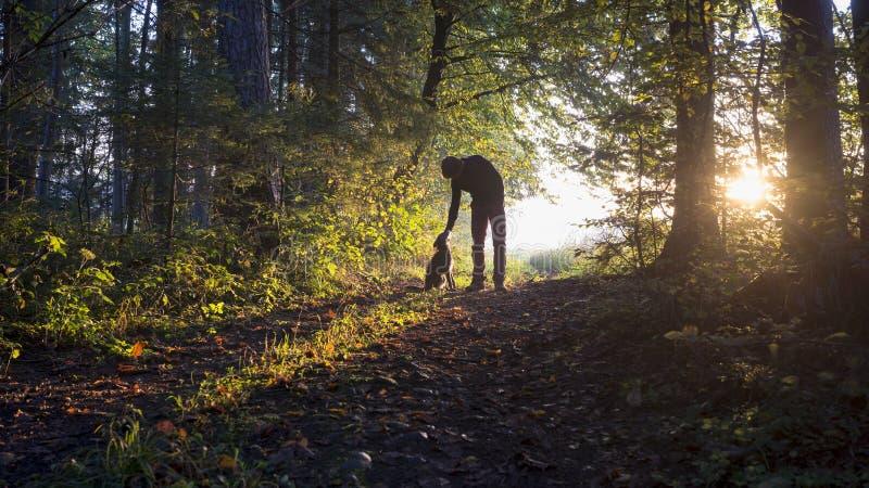 Человек гнуть вниз для того чтобы pet его черная собака по мере того как они наслаждаются красивым стоковое изображение rf