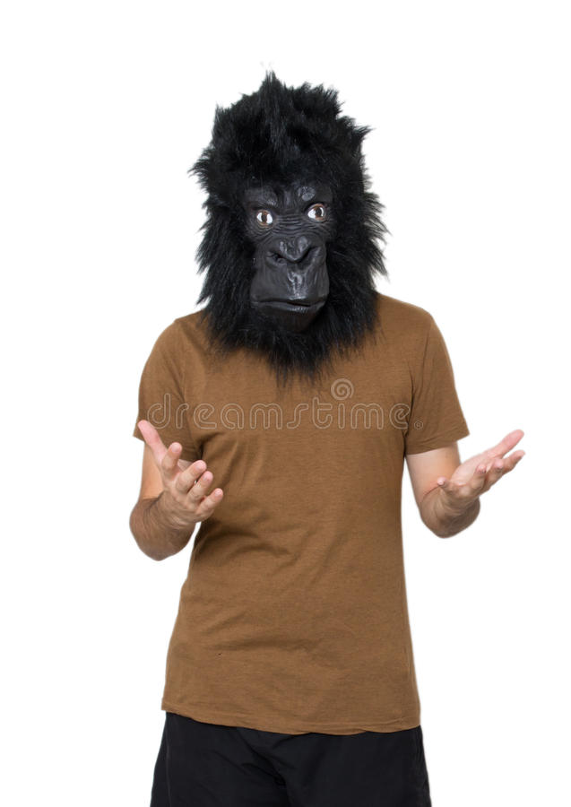 Человек гориллы стоковые изображения