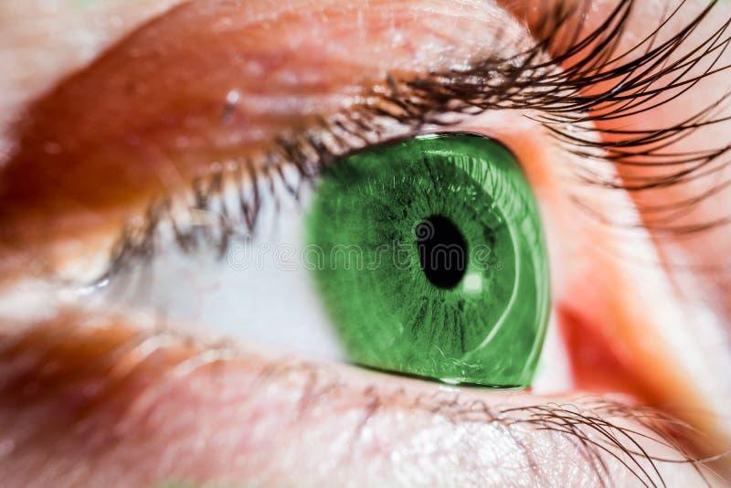 человек глаза зеленый стоковая фотография