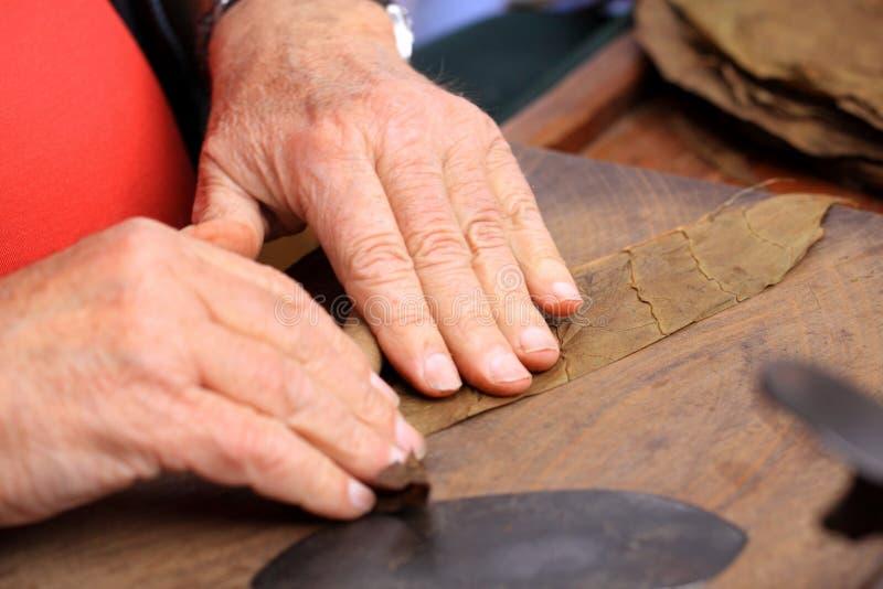 Человек делая сигары вручную стоковое изображение rf