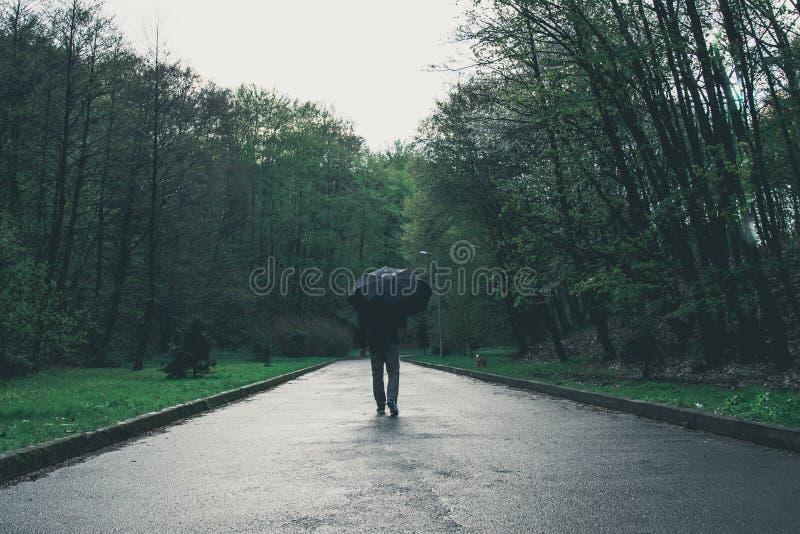 Человек идет парком на дождливый день стоковые изображения