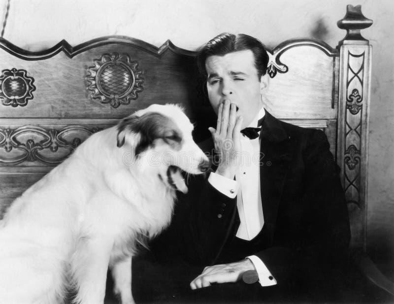 Человек и собака сидя совместно зевать (все показанные люди более длинные живущие и никакое имущество не существует Гарантии пост стоковое изображение rf