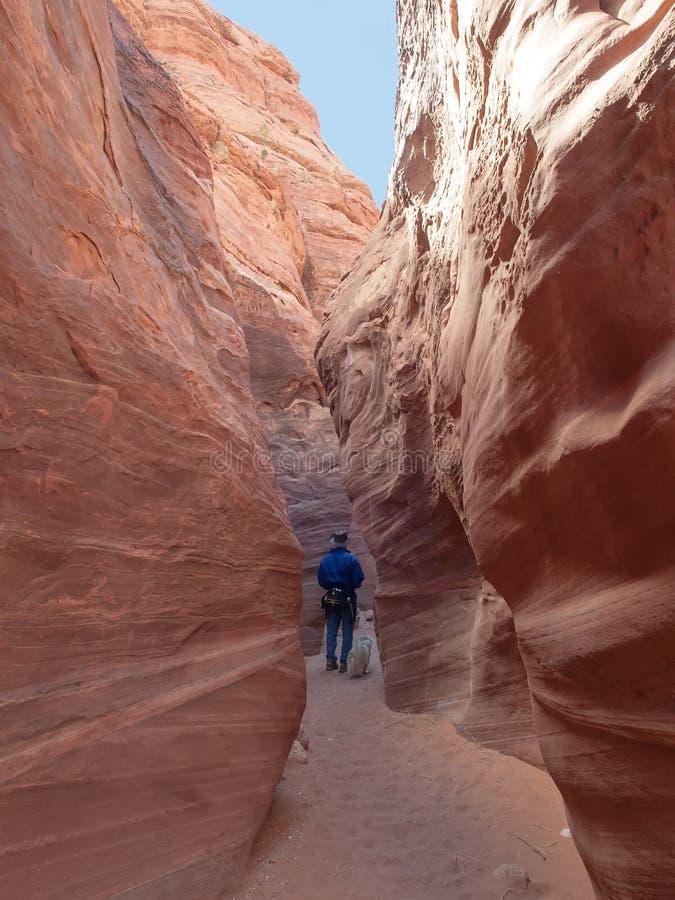 Человек идя вниз с узкого каньона стоковые изображения rf