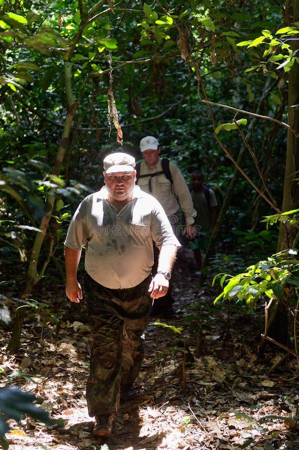 Человек идя на джунгли стоковая фотография rf