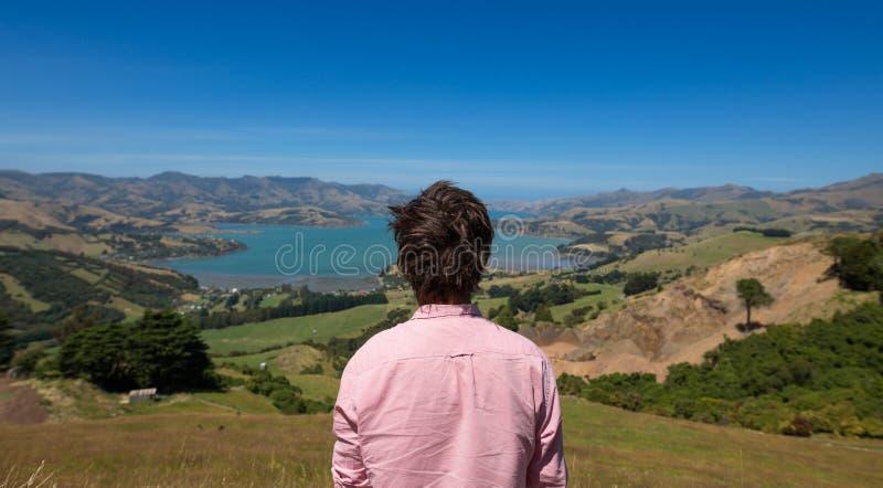 Человек наслаждаясь взглядом, Новой Зеландией стоковое фото rf