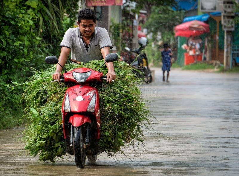 Человек на мопеде в Камбодже стоковая фотография