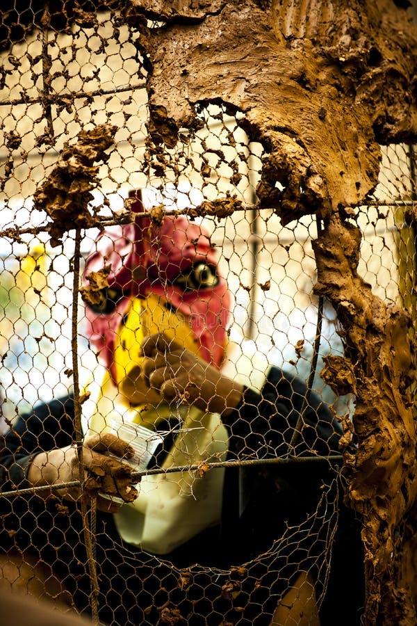 Человек птицы стоковое изображение