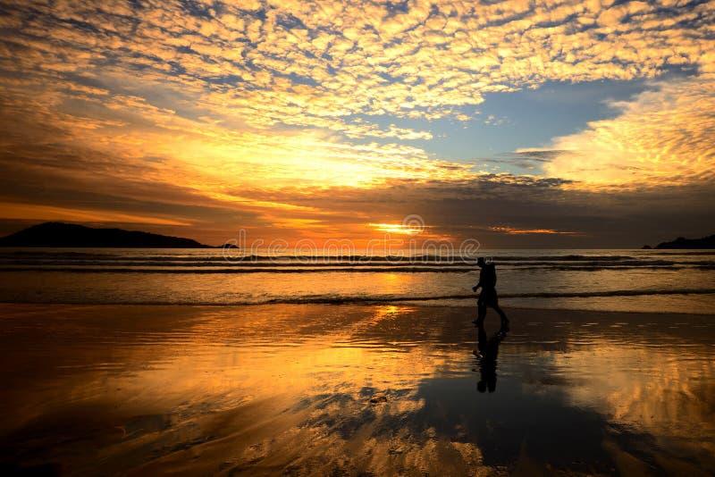 Человек пляж и заход солнца стоковая фотография rf