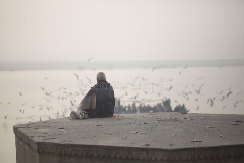 Человек сидит около птиц моря и Ганга стоковые изображения