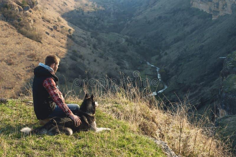 Человек с бородой идя его собака в природе, стоя с backlight на восходящем солнце, бросая теплое зарево и стоковая фотография