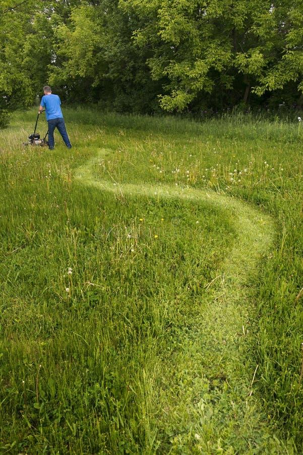 Человек с травокосилкой кося высокорослую траву и большую, большую лужайку стоковое изображение