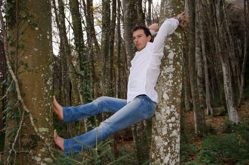 Человек думая и ослабляя на дереве стоковые изображения
