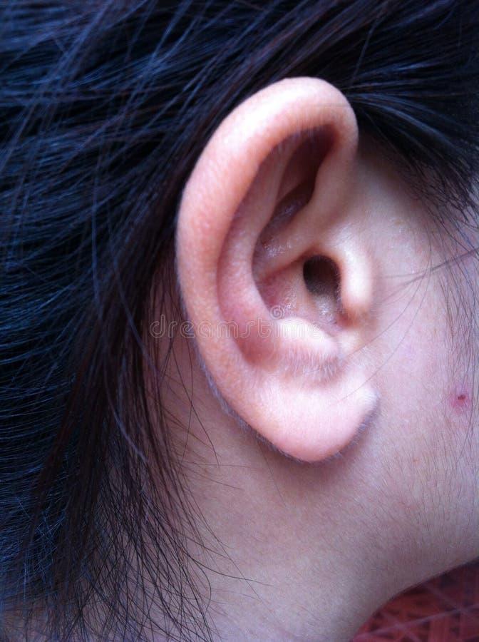 человек уха чертежа я карандаш стоковое фото