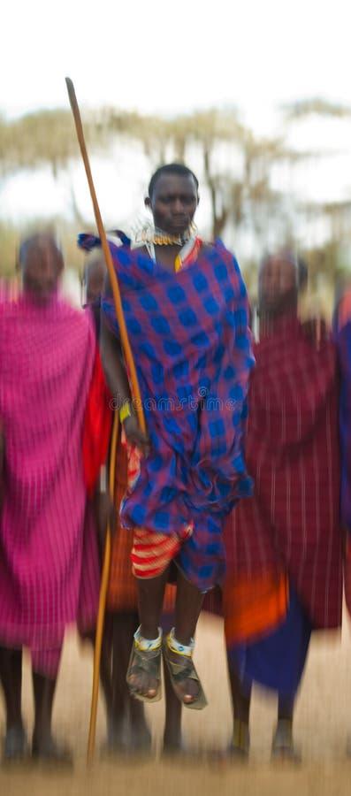 Человек Masai племени показывает ритуальные скачки стоковые изображения rf