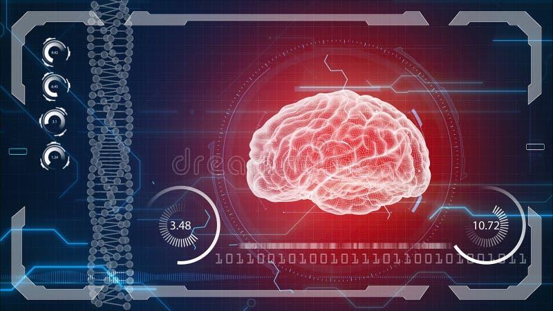 Человеческая анатомия Человеческий мозг Предпосылка HUD Будущее медицинской концепции анатомическое иллюстрация вектора