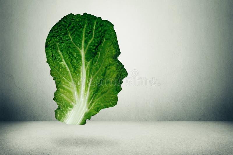 Человеческая концепция здорового питания стоковые изображения