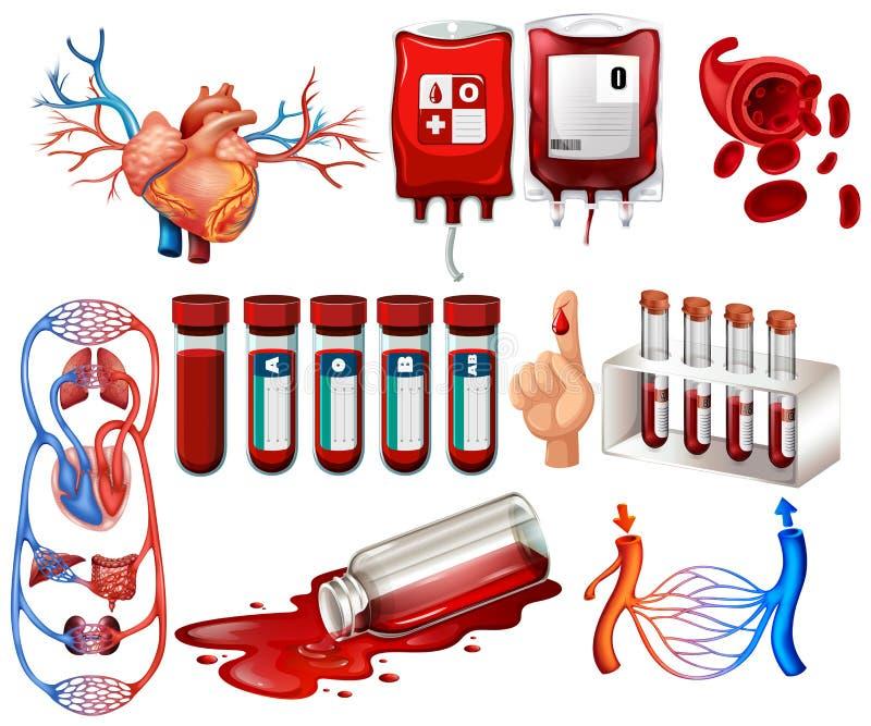Человеческая кровь и органы иллюстрация вектора