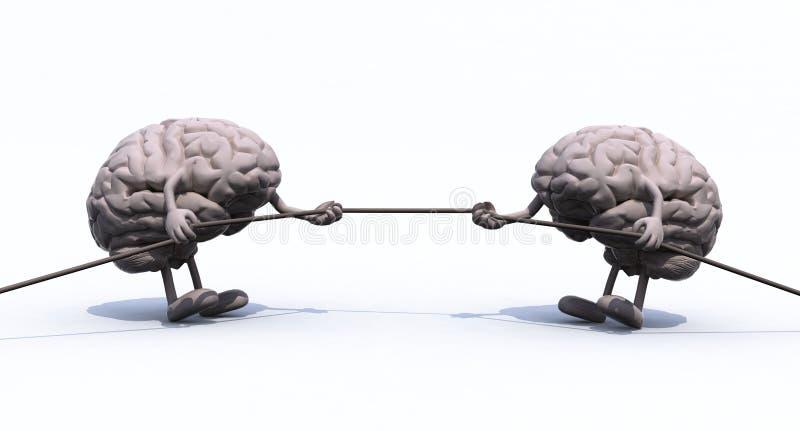 Человеческие мозги и веревочка войны иллюстрация штока