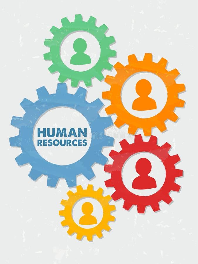 Человеческие ресурсы и персона подписывают внутри шестерни дизайна grunge плоские иллюстрация вектора
