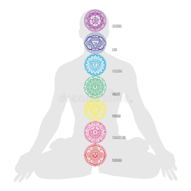 Человеческие chakras схема иллюстрация вектора