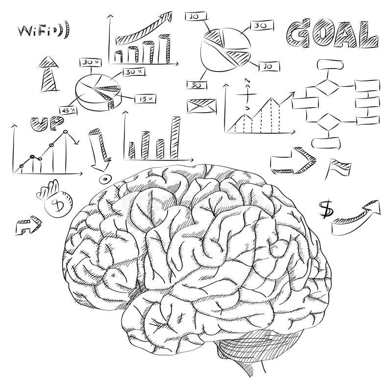 Человеческий мозг с диаграммой Infographic для плана вектора концепции дела и технологии сделанного эскиз к вверх иллюстрация штока