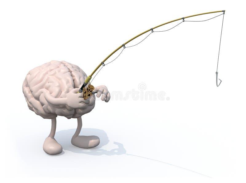Человеческий мозг с поляком оружий и ног и удить в наличии иллюстрация штока