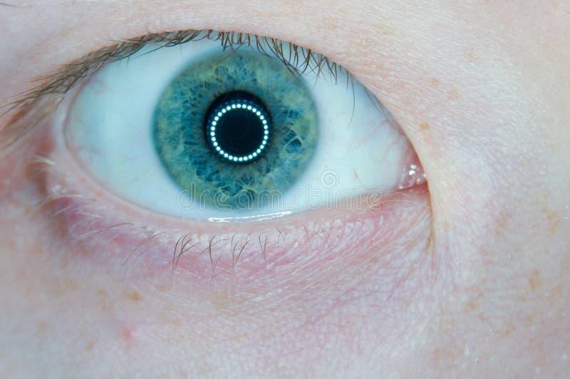 Человеческий одичалый весьма глаз конца-вверх стоковое изображение