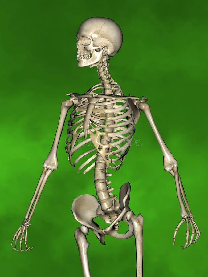 в свердловской области скелет с тремя фотографиями желаю
