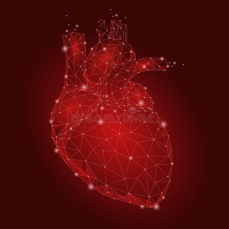Человеческий треугольник внутреннего органа сердца низко поли Соединенное illus части тела медицины модели технологии 3d красного иллюстрация вектора