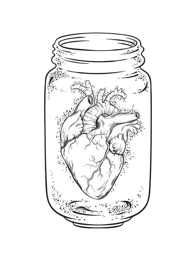 Человеческое сердце в стеклянном изолированном опарнике Иллюстрация вектора татуировки стикера, печати или blackwork нарисованная иллюстрация штока