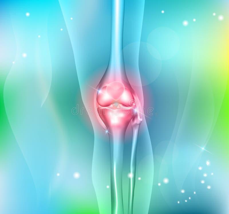 Человеческое соединение ноги и колена бесплатная иллюстрация