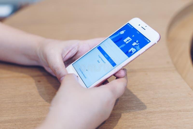 ЧИАНГМАЙ, ТАИЛАНД - май 10,2019: Женщина держа iPhone 6S Яблока подняла золото с приложением facebook на экране Facebook популярн стоковые изображения