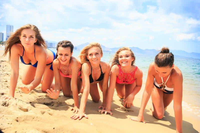 Чирлидеры крупного плана в бикини вползают в линии вдоль влажного песка стоковая фотография rf