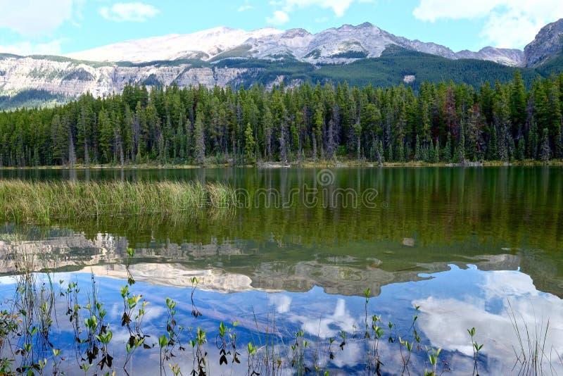 Чистая вода, горы и отражения стоковые фотографии rf
