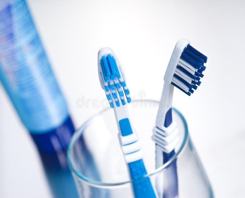 чистит зуб щеткой стоковые фотографии rf
