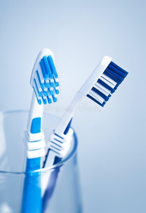 чистит зуб щеткой стоковые изображения rf