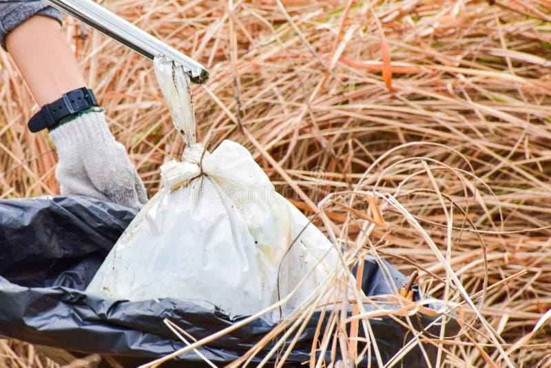 чистка стоковые фотографии rf