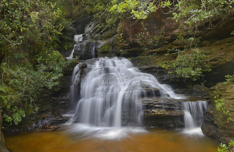 Чисто вода стоковая фотография