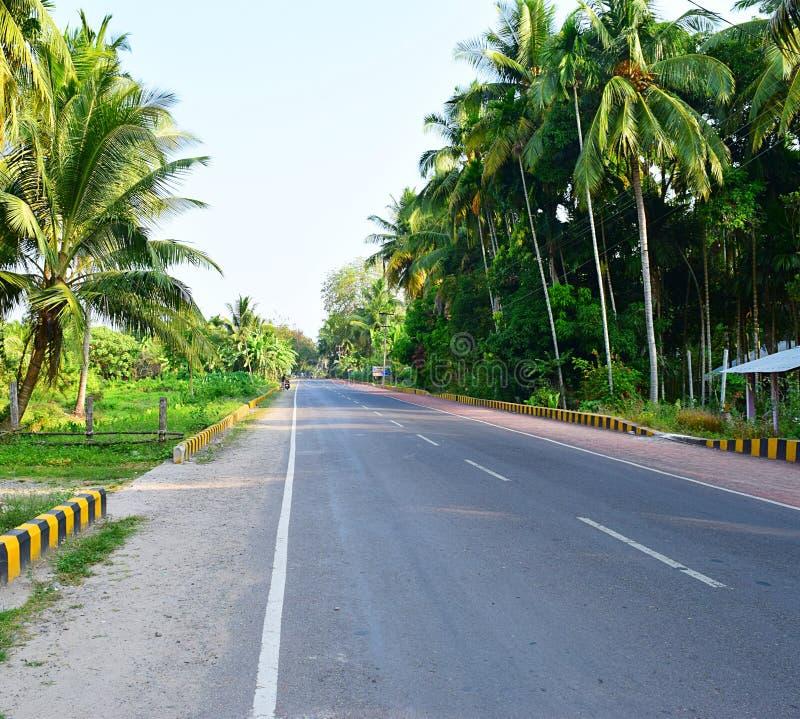 Чисто воздух с растительностью - сценарной дорогой с пальмами, островом Havelock, Andaman, Индией стоковая фотография rf