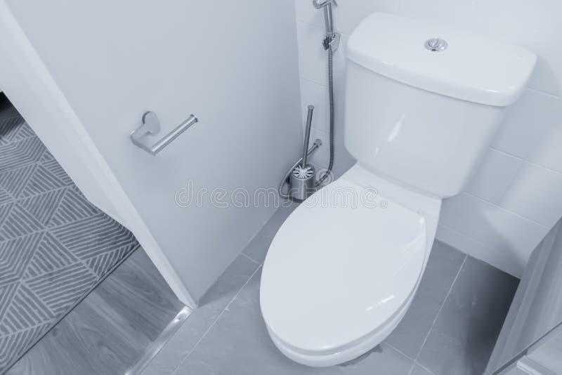 Чистый ливень биде туалета со сливом шара шкафа стоковое изображение