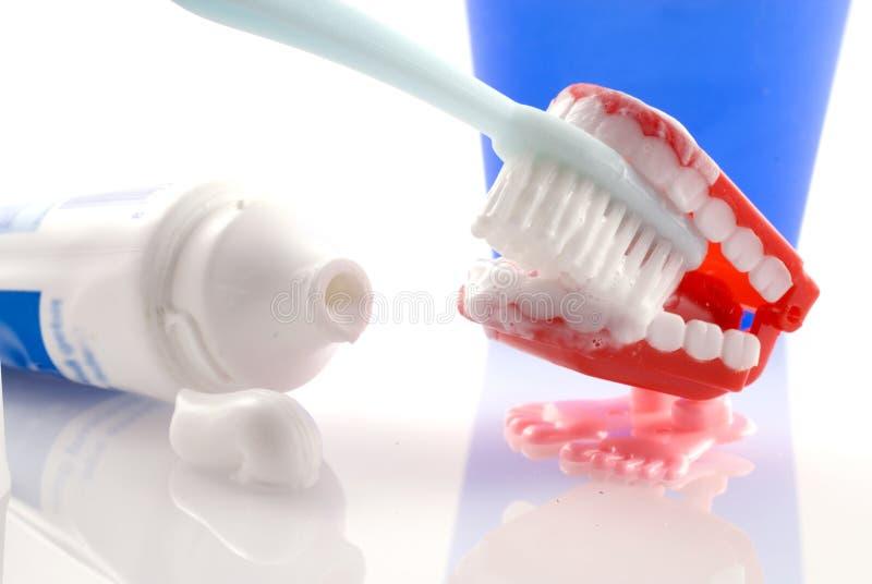 чистя щеткой зуб стоковые изображения