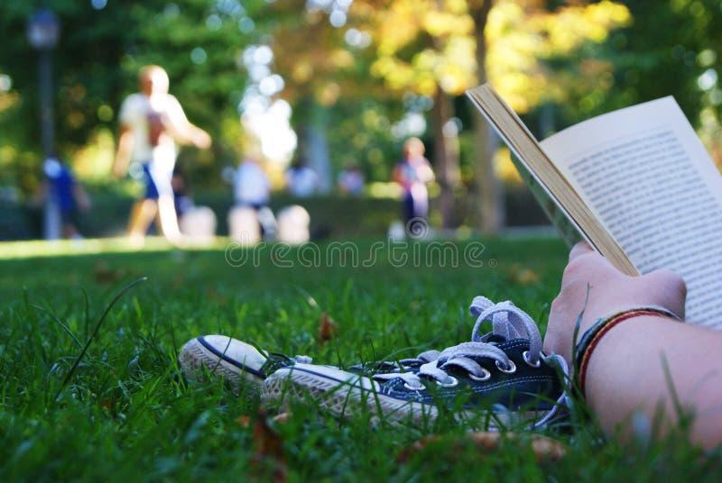 Читать на траве стоковые фотографии rf