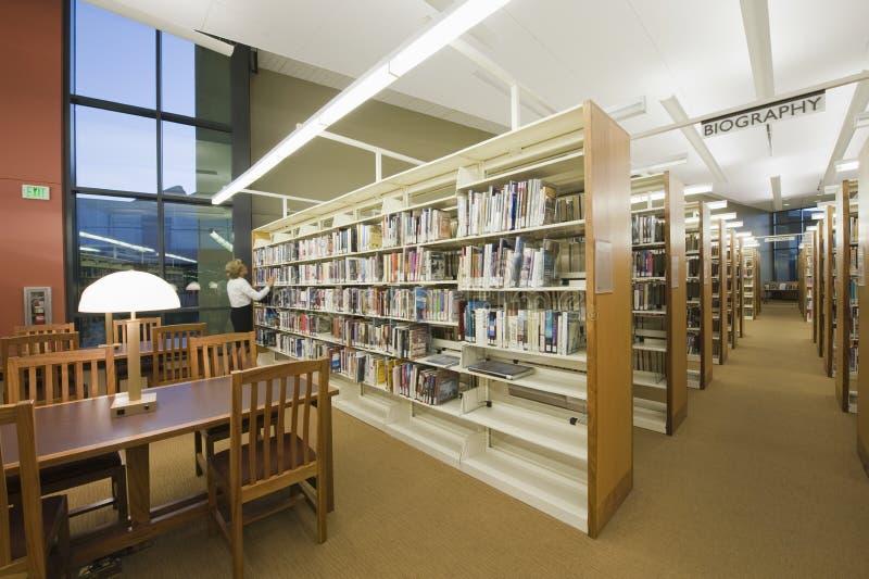 Читальный зал в библиотеке стоковое изображение rf