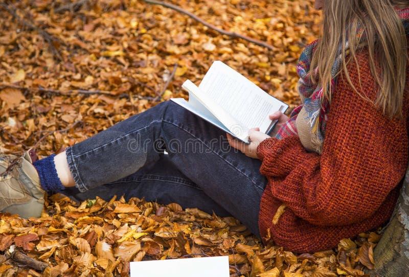 Чтение девушки в лесе осени стоковая фотография