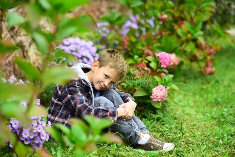 Что, который нужно предпологать Небольшой мальчик ослабляет в саде Небольшой мальчик надеясь что-то Живите в очень душе ожидания  стоковое фото rf